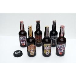 Combo 6 cervejas + abridor ímã